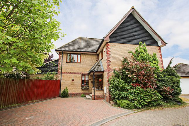 Thumbnail Detached house for sale in Grove Gardens, Fordham