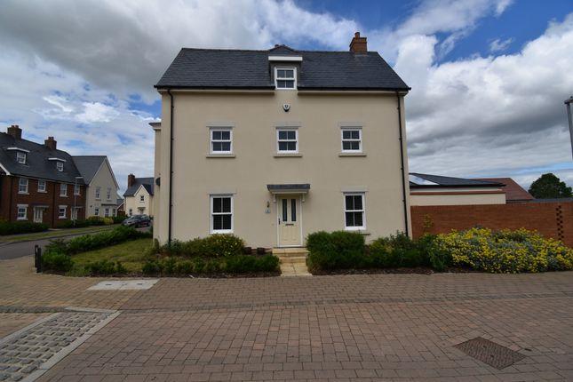Thumbnail Semi-detached house to rent in Finzi Grove, Biggleswade