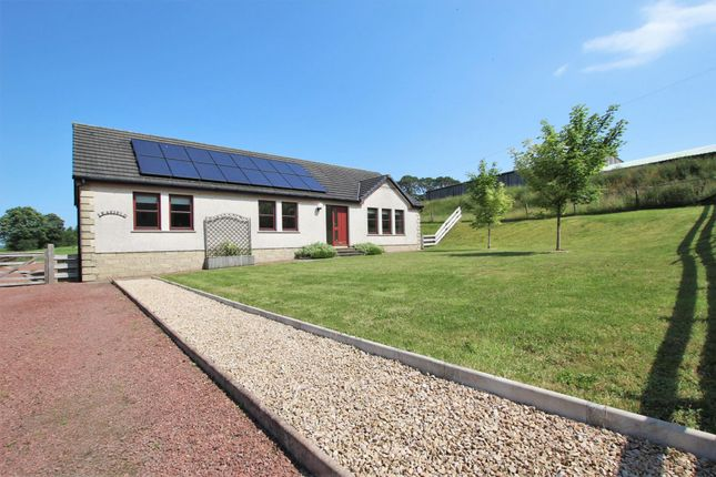 Thumbnail Detached bungalow for sale in Leafield, Ampherlaw Farm, Carnwath