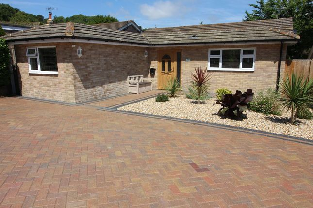 Thumbnail Bungalow for sale in Buckhurst Close, Eastbourne