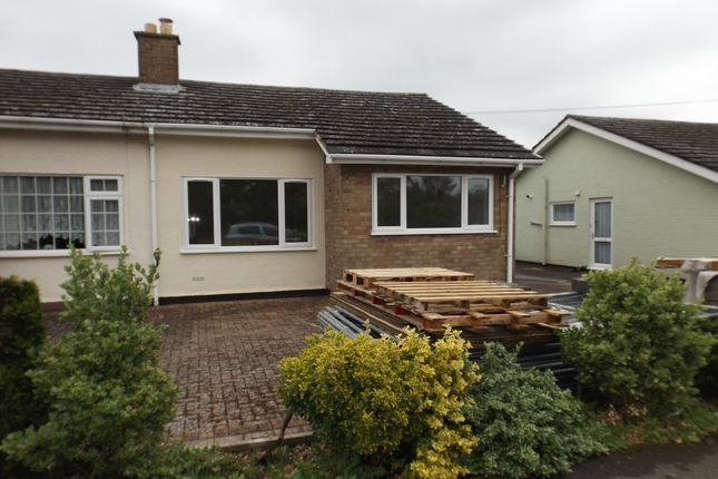 Thumbnail Semi-detached bungalow for sale in Willow Road, Potton