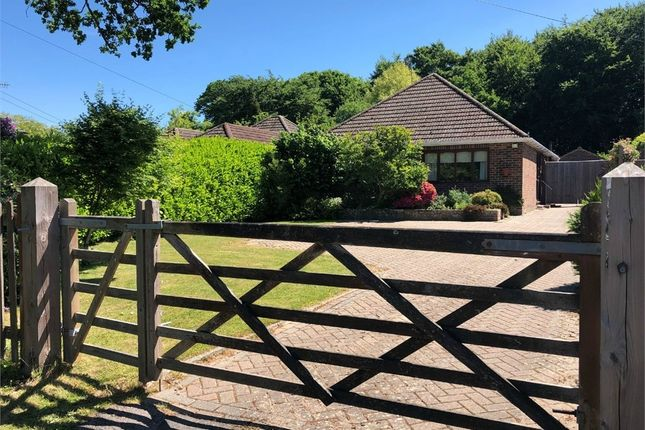 Detached bungalow for sale in Felcourt Road, Felcourt, Surrey