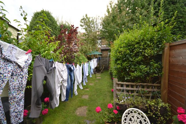 Garden of Wolsey Grove, Esher KT10