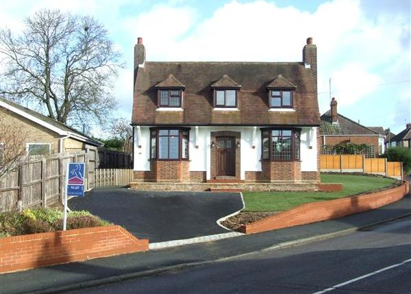 Thumbnail Detached house to rent in New Cheveley Road, Newmarket
