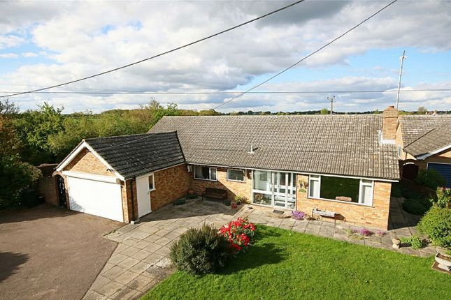 Thumbnail Detached bungalow for sale in Aythorpe Roding, Dunmow, Essex