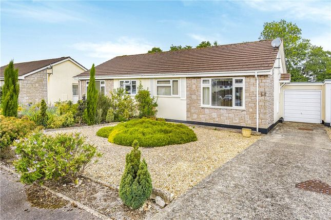Thumbnail Semi-detached bungalow for sale in Willhayes Park, Axminster, Devon