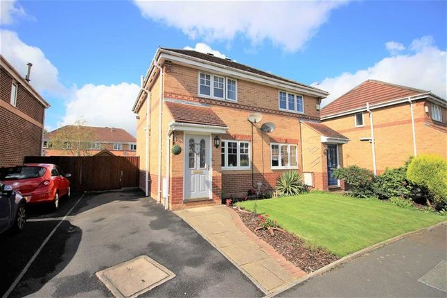 Thumbnail Semi-detached house to rent in Cloughfield, Penwortham, Preston