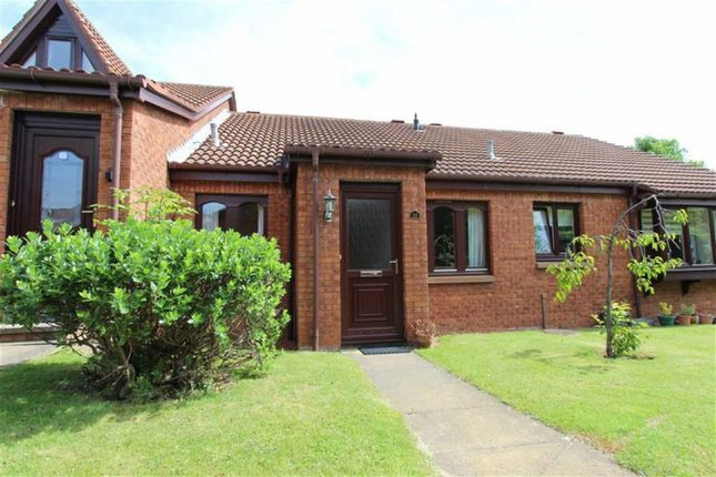 Thumbnail Detached bungalow to rent in Application Pending, 33, Carrick Drive, Dalgety Bay, Fife