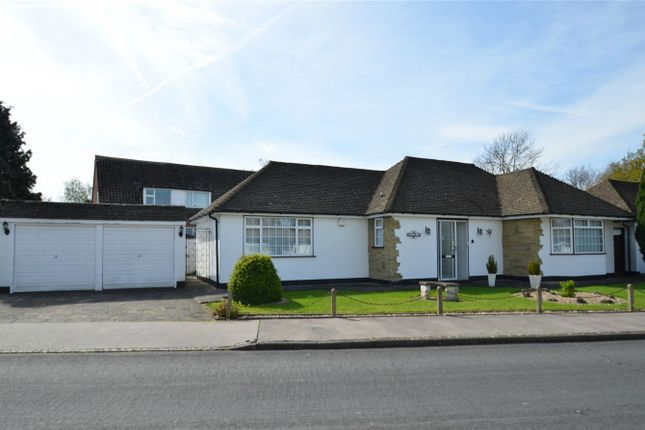 Thumbnail Detached bungalow for sale in High Trees, Shirley, Croydon, Surrey