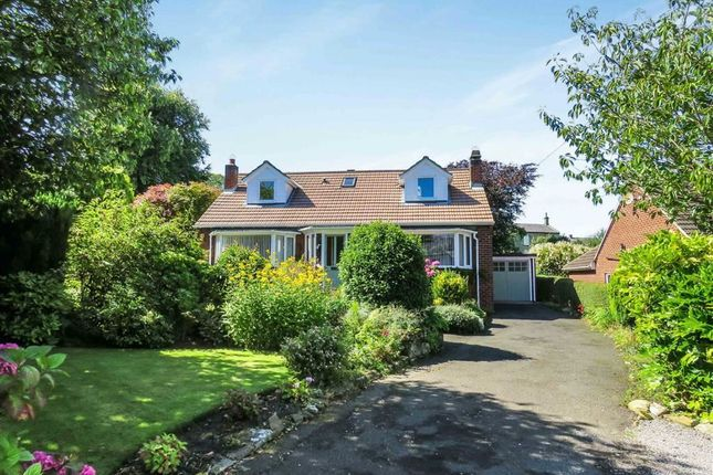 Thumbnail Detached house for sale in The Avenue, Alnwick, Northumberland