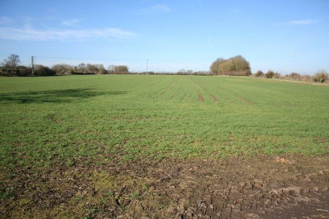 Thumbnail Land for sale in Orton Road, Warton
