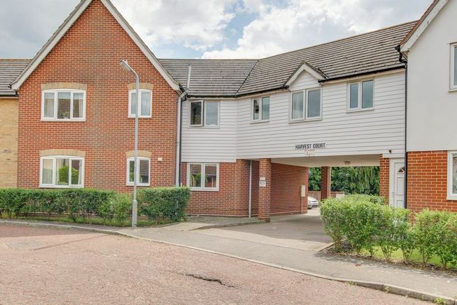 Thumbnail Flat for sale in Glenway Close, Great Horkesley, Colchester