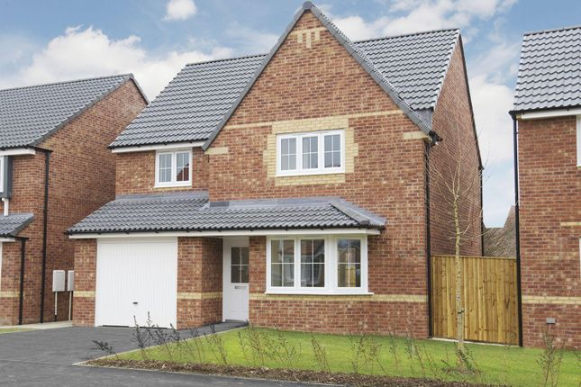 """Thumbnail Detached house for sale in """"Kennington"""" at Bawtry Road, Bessacarr, Doncaster"""