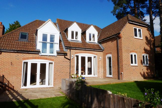 Thumbnail Detached house for sale in West Close, Verwood