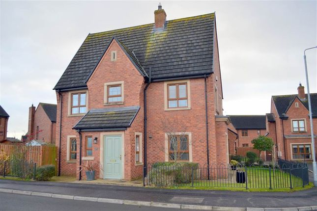 Thumbnail Semi-detached house to rent in 17, Brooke Hall Heights, Belfast