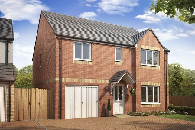 """Thumbnail Detached house for sale in """"The Whithorn """" at Lanton Road, Falkirk"""