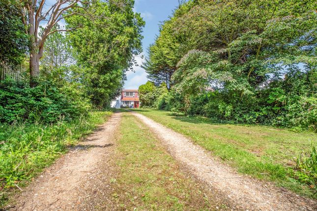 Thumbnail Detached house for sale in Belle Vue Road, Weymouth