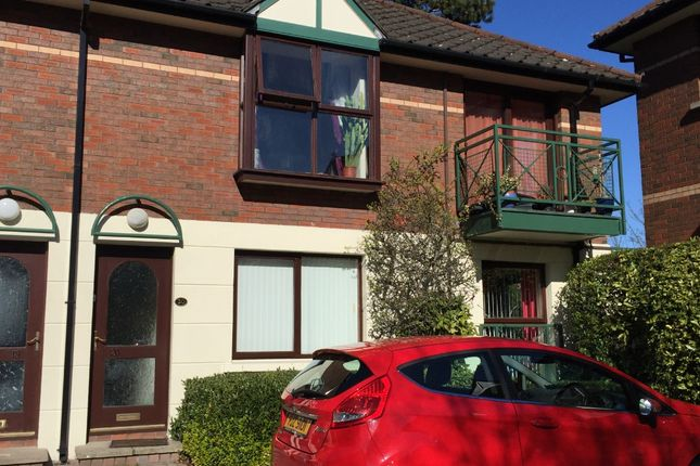 Thumbnail Flat to rent in Malone Road, Belfast