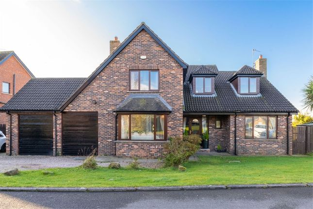 Thumbnail Detached house for sale in Curlew Crescent, Newtownards, County Down