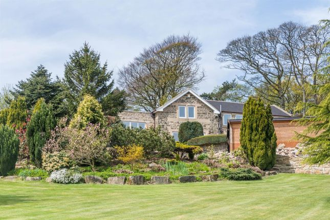 Thumbnail Detached house for sale in Cold Harbour Lane, Brackenfield, Near Alfreton