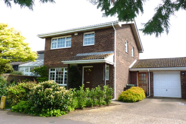 Thumbnail Detached house for sale in All Hallows, Sandy