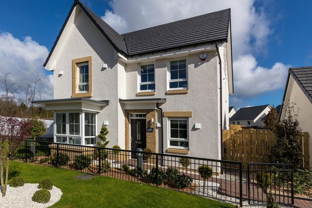 "Thumbnail Detached house for sale in ""Balbardie"" at Merchiston Oval, Brookfield, Johnstone"