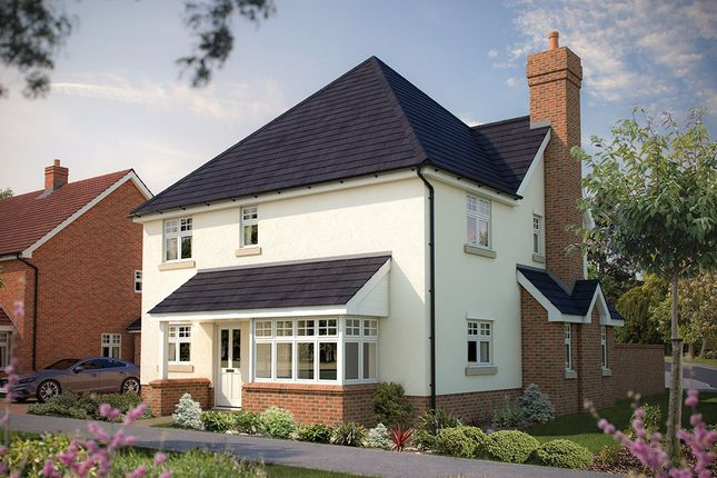 "Thumbnail Detached house for sale in ""The Rochester"" at Park Road, Hellingly, Hailsham"