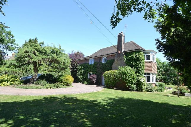 Thumbnail Detached house for sale in Ham Shades Lane, Whitstable