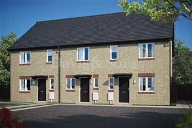 Thumbnail Terraced house to rent in Sinter Grove, Glan Llyn, Llanwern, Newport.