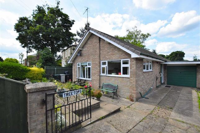 Thumbnail Bungalow for sale in Eastgate, Louth, Lincolnshire