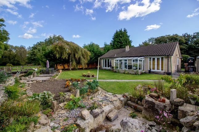 Thumbnail Property for sale in Spring Gardens, Frome