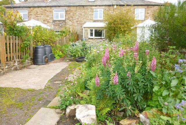 Thumbnail Terraced house for sale in Hillersdon Terrace, Nenthead, Cumbria