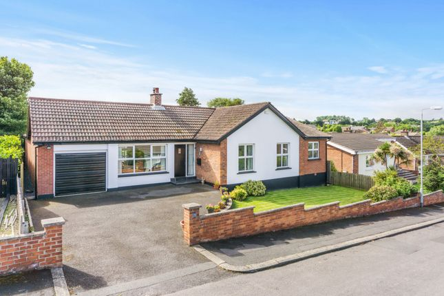 Thumbnail Detached bungalow for sale in Rathmoyle Park, Holywood