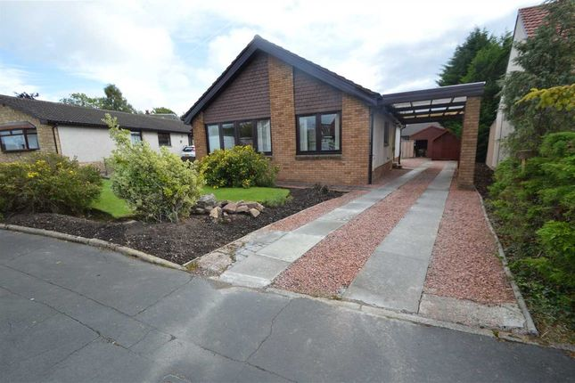 Thumbnail Bungalow for sale in Montgomery Crescent, Wishaw