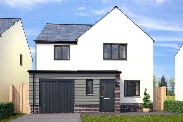 Thumbnail Detached house for sale in 38 Barnard, Paignton, Devon