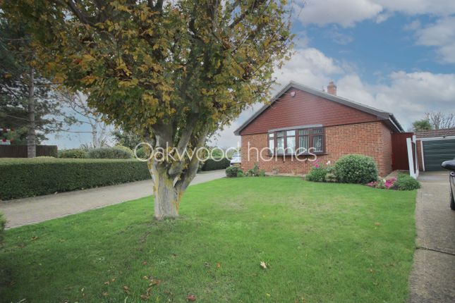Thumbnail Detached bungalow for sale in Foads Hill, Cliffsend, Ramsgate