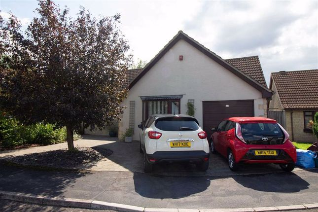 Thumbnail Detached bungalow for sale in Stirling Way, Frome