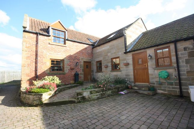 Thumbnail Property for sale in Loftus, Saltburn-By-The-Sea
