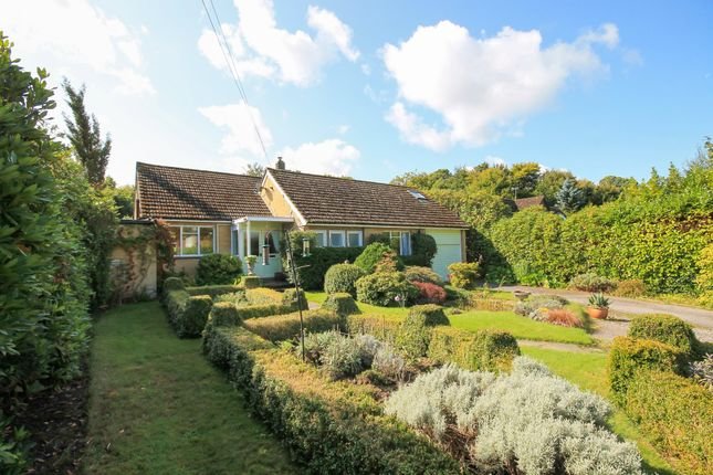 Thumbnail Detached bungalow for sale in Chestnut Walk, Felcourt, East Grinstead