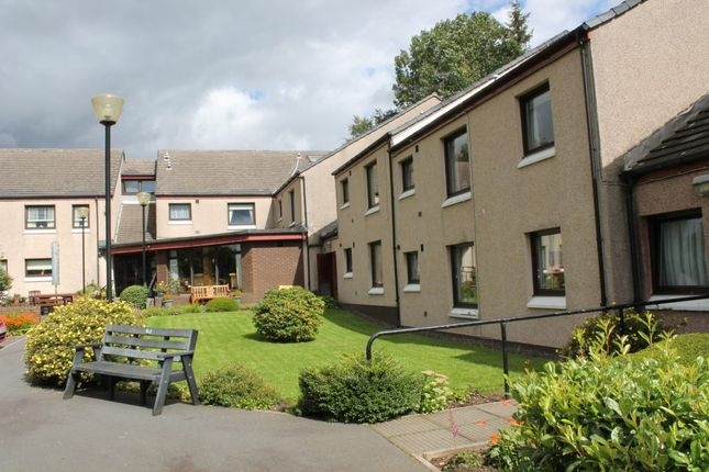 Thumbnail Studio to rent in Nigel Henderson Court, Sanquhar