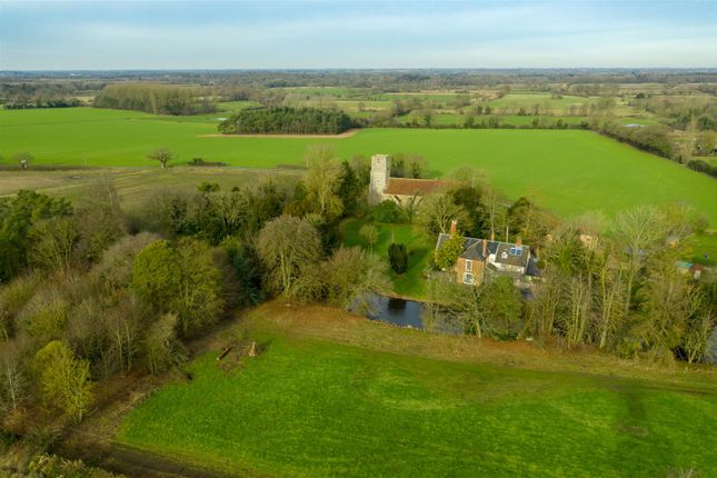 Thumbnail Detached house for sale in Wilby, Norwich