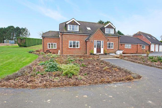 Thumbnail Property to rent in Poplars Farm, Brightwalton, Brightwalton, Newbury, Berkshire