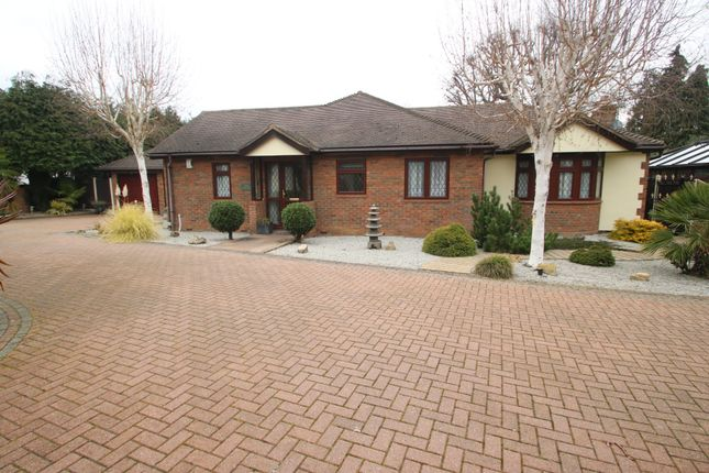 Thumbnail Detached bungalow for sale in Broad Walk, Hockley