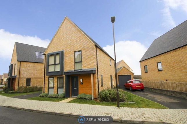Thumbnail Detached house to rent in Tolkien Meadow, Tattenhoe Park, Milton Keynes