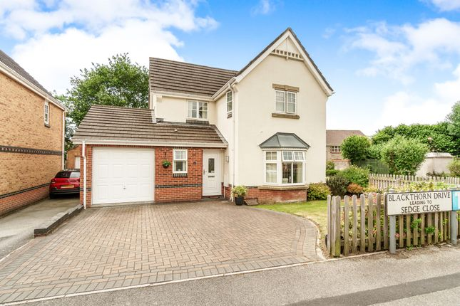 Thumbnail Detached house for sale in Blackthorn Drive, Ivybridge