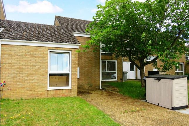 Thumbnail Terraced house to rent in Earls Field, RAF Lakenheath, Brandon