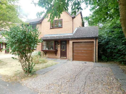 Thumbnail Semi-detached house to rent in Mewburn, Bretton, Peterborough