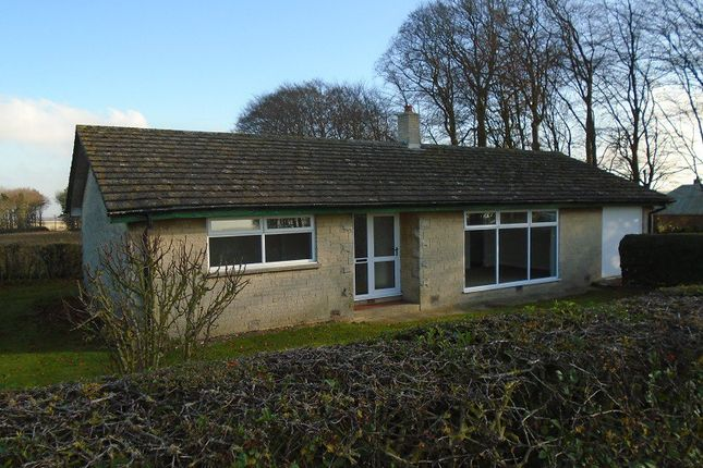 Thumbnail Bungalow to rent in Rothwell, Rothwell, Market Rasen, Lincolnshire