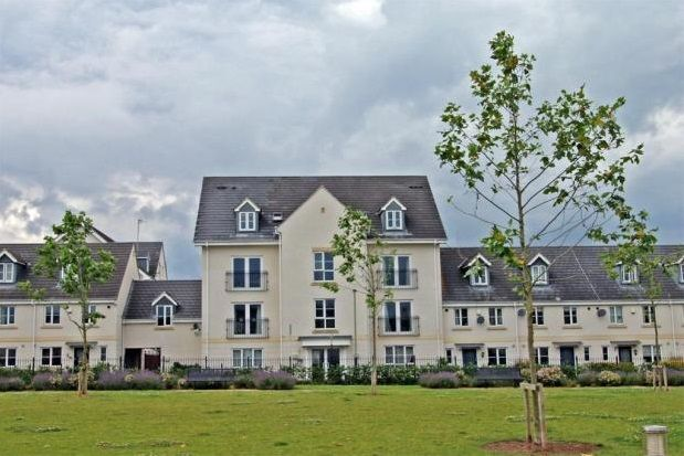 Thumbnail Property to rent in Pintail Close, Cheltenham