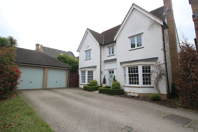 Thumbnail Detached house for sale in Wood Lane, Hockley